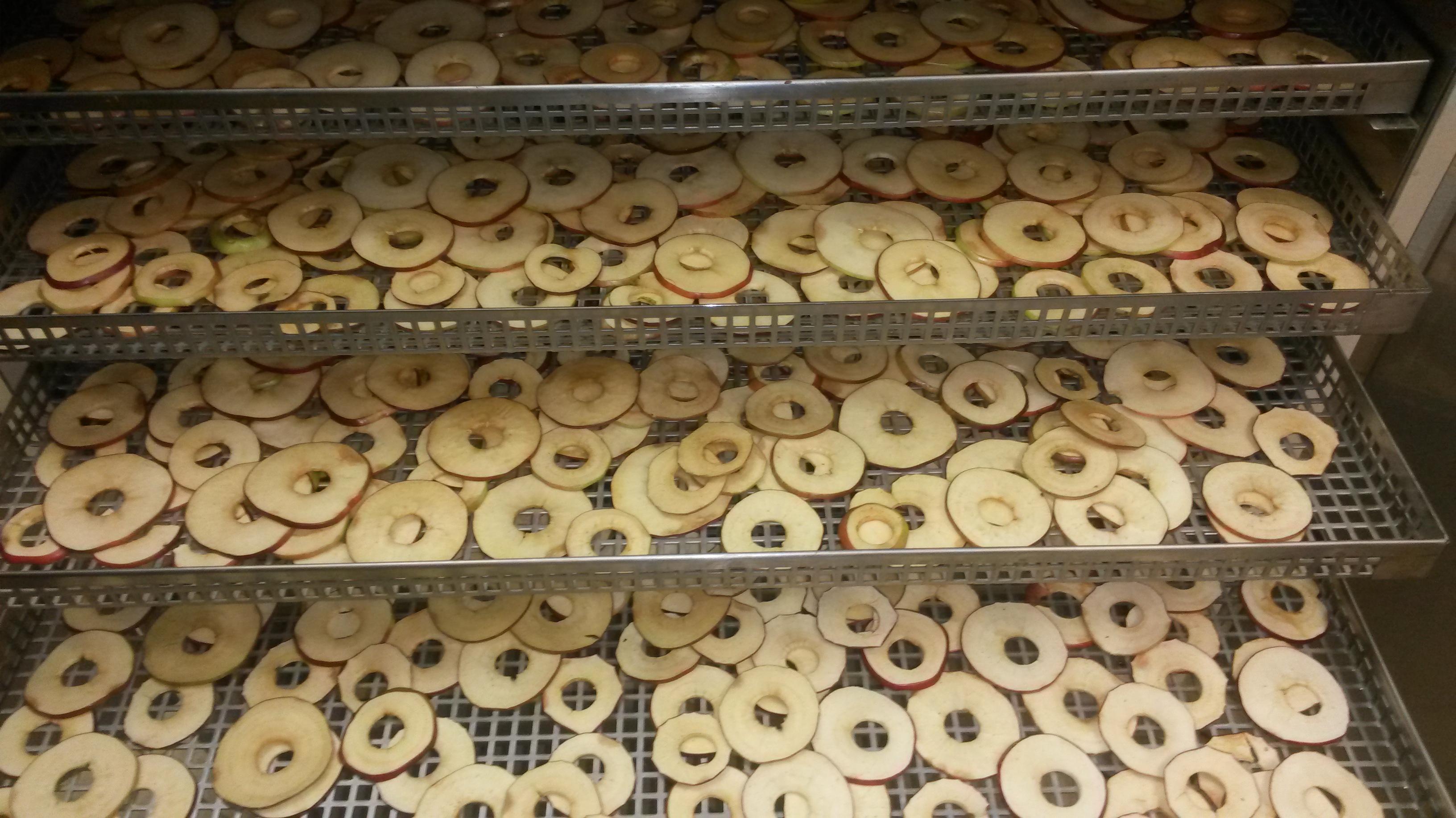 Энергоэффективный сушильный шкаф для пищевых продуктов
